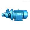 旋涡泵(十大品牌)1W型