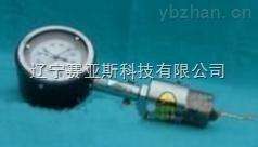 SYS-HXTZ-I通球指示器