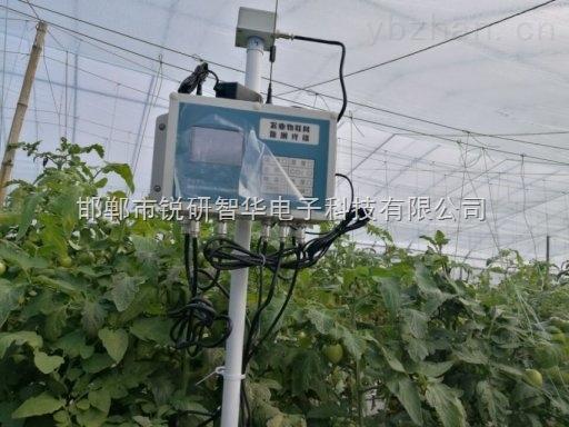 RYQ-4ZD农业设施监测终端