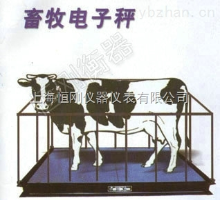 1-3吨称牛称猪电子地磅秤价格