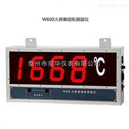 W600大屏幕有线钢水测温仪挂壁式泰州双华仪表有限公司厂家直销