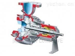 美国福斯FLOWSERVE ERPN 悬臂、单级流程泵