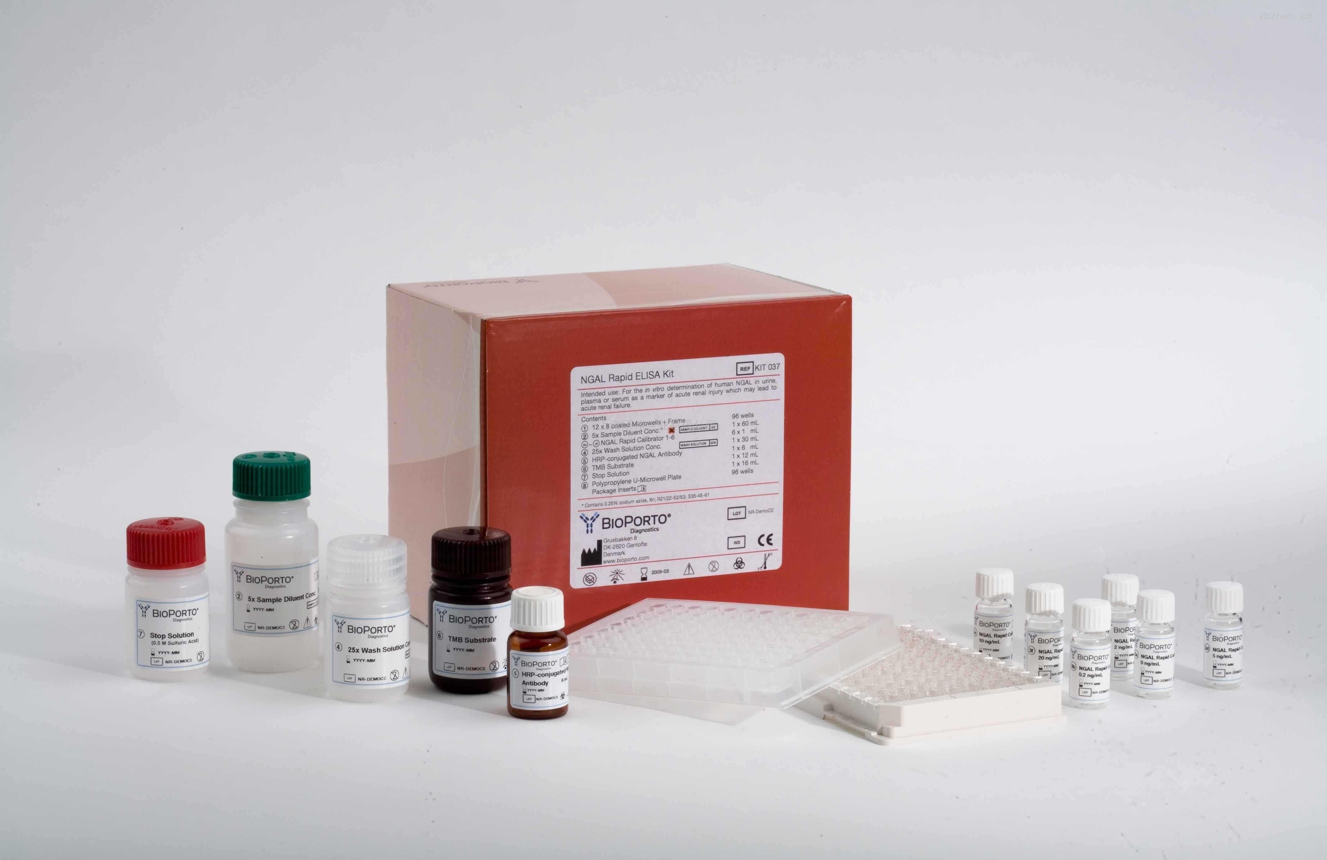 石蠟切片組織APC蛋白表達NBT顯色光學顯微鏡檢測試劑盒