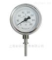 上海自动化双金属温度计