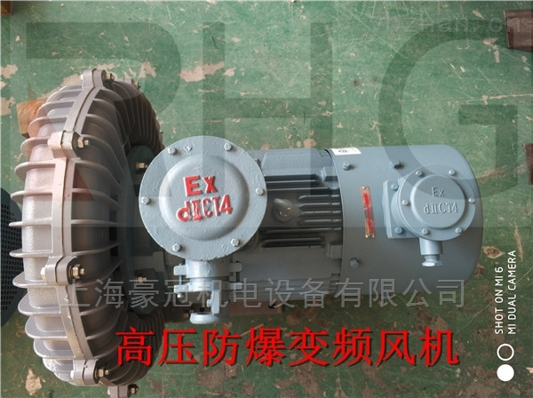 5.5KW高壓力鼓風機-防爆渦旋式風機