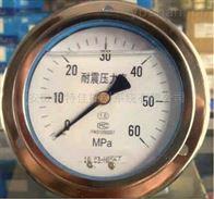 YN-100ZQ轴向带边盘装耐震压力表