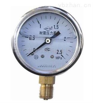 YN-60B-FZ不銹鋼耐震耐腐壓力表