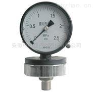 YP-100-BZ耐腐耐震膜片压力表