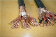 WZR-DJYPE WZR-DJYP2E低烟无卤阻燃信号电缆