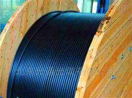 湖南省长沙市GYFTZY-12B1室外非金属光缆