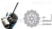 浙江嘉興OPGW-24B1-100廠家代理生產