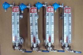 陕西化工防腐设备远传磁翻板液位计