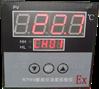 RTWb-261i-5防爆温度巡检仪