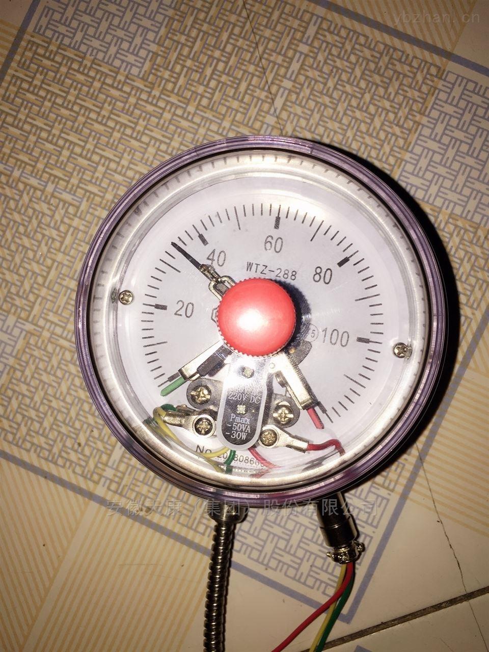 压力式温度计WTZ-288
