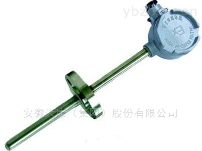 耐磨热电阻类型
