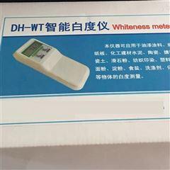 DH-WT上海白度仪
