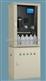 在线水质总磷分析仪