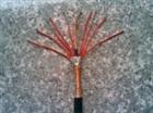 聚氯乙烯絕緣屏蔽電線