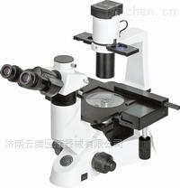 NIB-100宁波永新生物显微镜价格