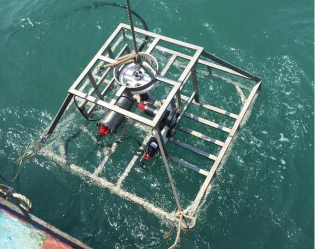 廣西首套珊瑚礁海底有纜在線監測系統成功布放