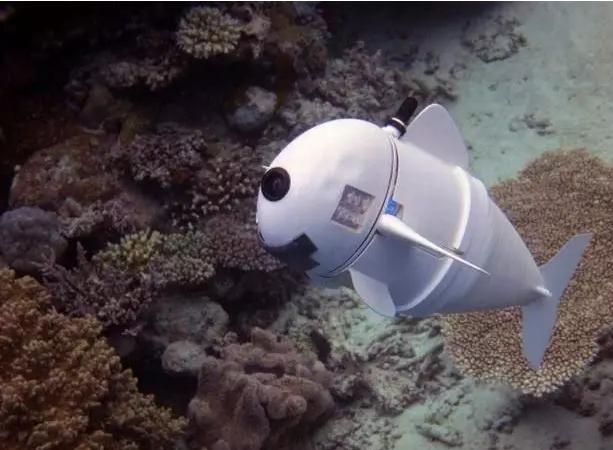 天上有无人机,地上有无人车,水中有机器鱼?