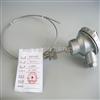 WRSG-133铠装盐浴炉专用热电偶